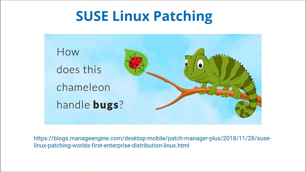 Patch Tuesday updates from ManageEngine
