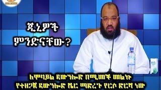 what are jinis?? By Dai Sadiq Mohammed ( Ustaz Abu Heydar )