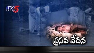 No Maternity Nursing Home Services in Vizianagaram   Telugu News   TV5 News