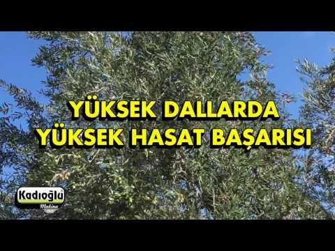 Halatlı Zeytin Silkme Hasat Makinesi - 2016 - Kadıoğlu Zeytin Silkeleme