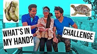 What's in My Hand Challenge | Rimorav Vlogs