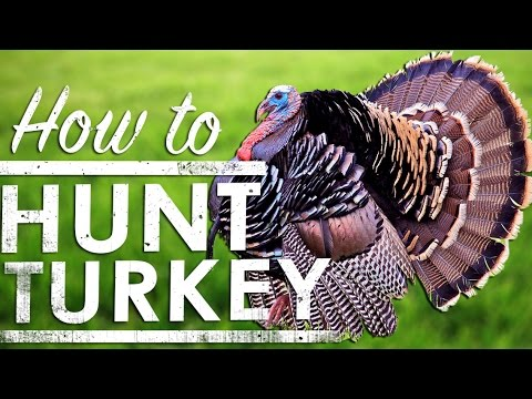 Turkey Hunting Tips: How To Hunt Turkey | The Sticks Outfitter | EP. 36
