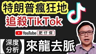 【深度分析】特朗普「強盜式明搶」中國熱門軟件TikTok|微軟或收購抖音國際版TikTok|網絡戰的重要性|【肥仔傑.論政】