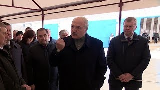 Они же гадят друг на друга. Лукашенко ЖЕСТКО отчитывает чиновников. Визит в Шкловский район