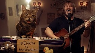 jack black and lil bub help save the world again earthtomarrakech