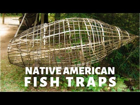 How Native Americans Used Fish Traps To Hunt
