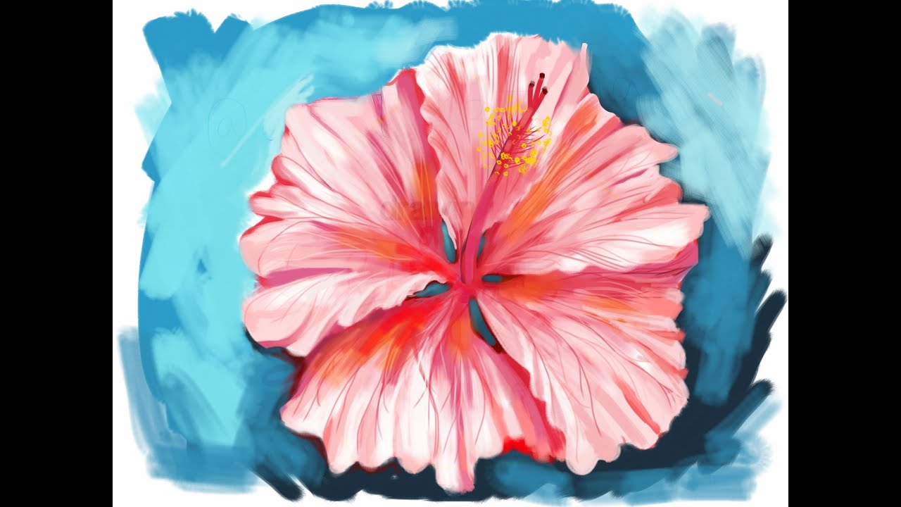Learn How To Draw A Hibiscus Flower From Memory