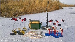 Жерлицы. Зимняя рыбалка. Ловля щуки на жерлицы.