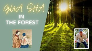 How to find Gua sha tools in the forest!