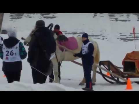 VII Всероссийские зимние сельские игры