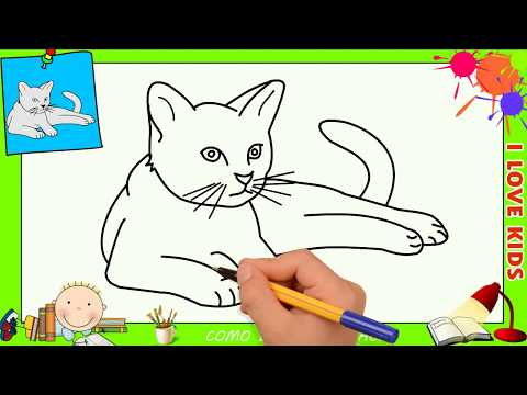 Como Desenhar Um Gato Passo A Passo Tutorial De Desenho