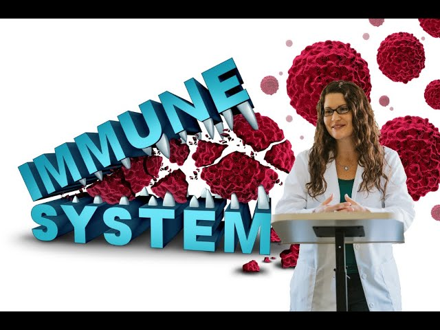 Ayurvedic Herbs for Immune Health