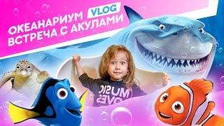 VLOG: Тайланд Зимой | Классный Океанариум | Детский Отдых | Развлекательное Видео