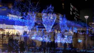11.11.25 辻堂 Terrace Mall(テラスモール)湘南 (イルミネーション)点...