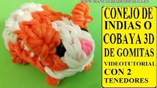 Repeat youtube video COMO HACER UN CONEJITO DE INDIAS O COBAYA 3D DE GOMITAS CON DOS TENEDORES. figura ligas Hamster