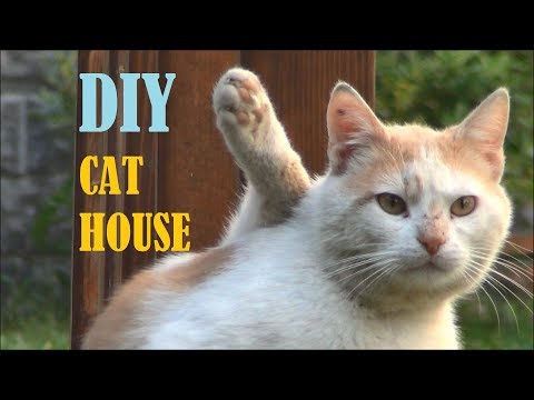 Turning the shoe cabinet into a cat house - DIY project
