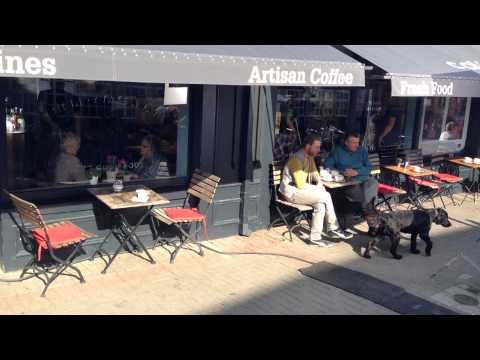 Cafe Gray Transport Ireland Shoot 8th Sept 2015
