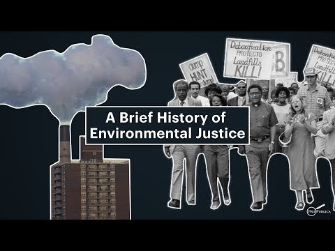 A Brief History of Environmental Justice