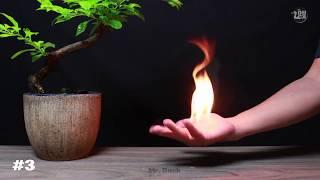 Büyüleyici Ateş Deneyleri ( 10 Kolay Numara )