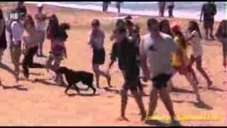 Liam Payne y Louis Tomlinson surfeando en Syndey ( Fan le tocó el trasero a Louis)