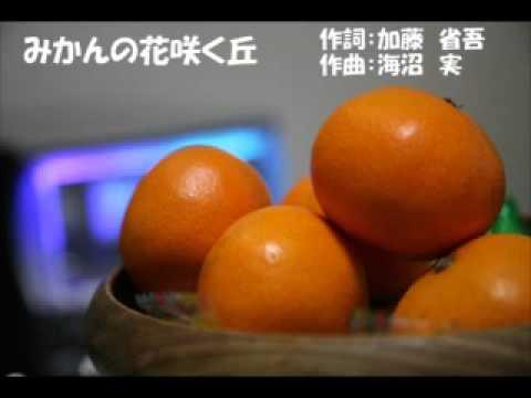 みかんの花咲く丘 (複音ハーモニカ) - YouTube