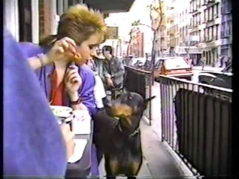 The First Nice Sunday of 1987 in the East Village