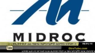 DireTube News Top 20 Largest Private Companies in Ethiopia