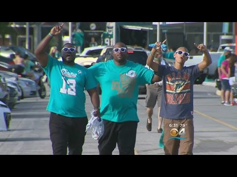Dolphins Fans Excited About Big Win, Dan Campbell Era
