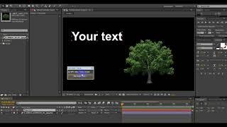 NPV-video. Script for run Auto Trace.
