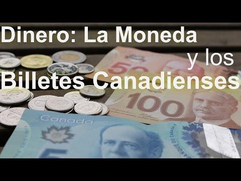 Dinero: La Moneda y los billetes Canadienses