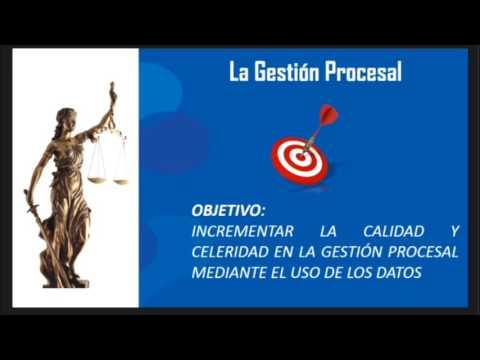 José Vega BID DATA una herramienta de Gestión Procesal