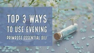 Top 3 Ways to Use Evening Primrose Essential Oil ~ Collab w/ Jessica Lee!