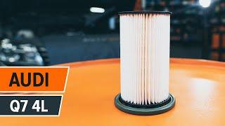 Τοποθέτησης Φίλτρο καυσίμων ντίζελ AUDI Q7 (4L): δωρεάν βίντεο