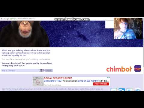 YOU STUPID MONKEY- Cleverbot Chat