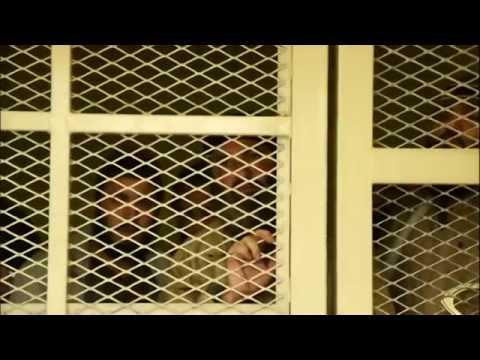 US Prison Afghanistan Bagram Detention Facility