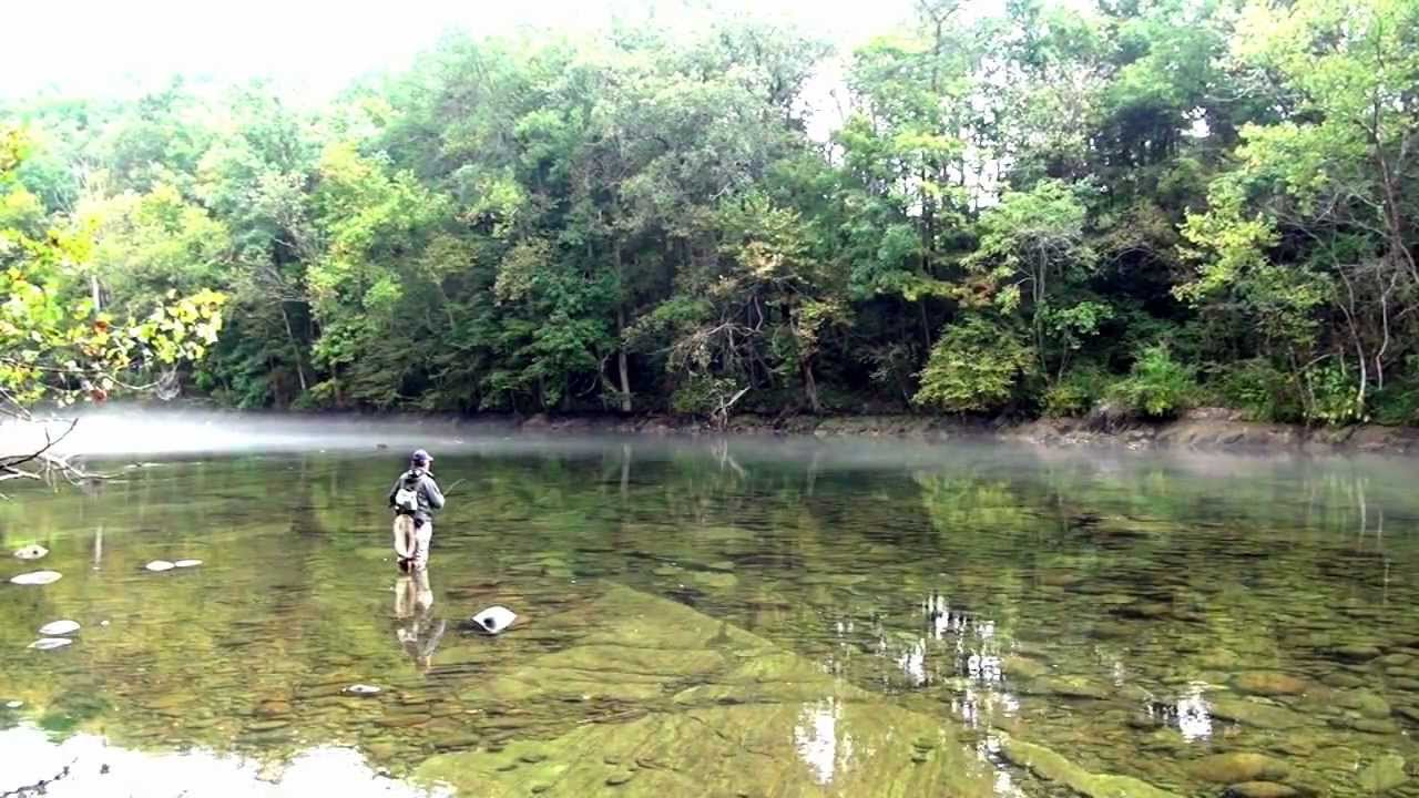 Bruce Wankel Fly Fishing On South Holston River Music