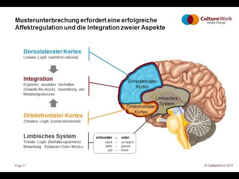 Lean meets Neuroscience