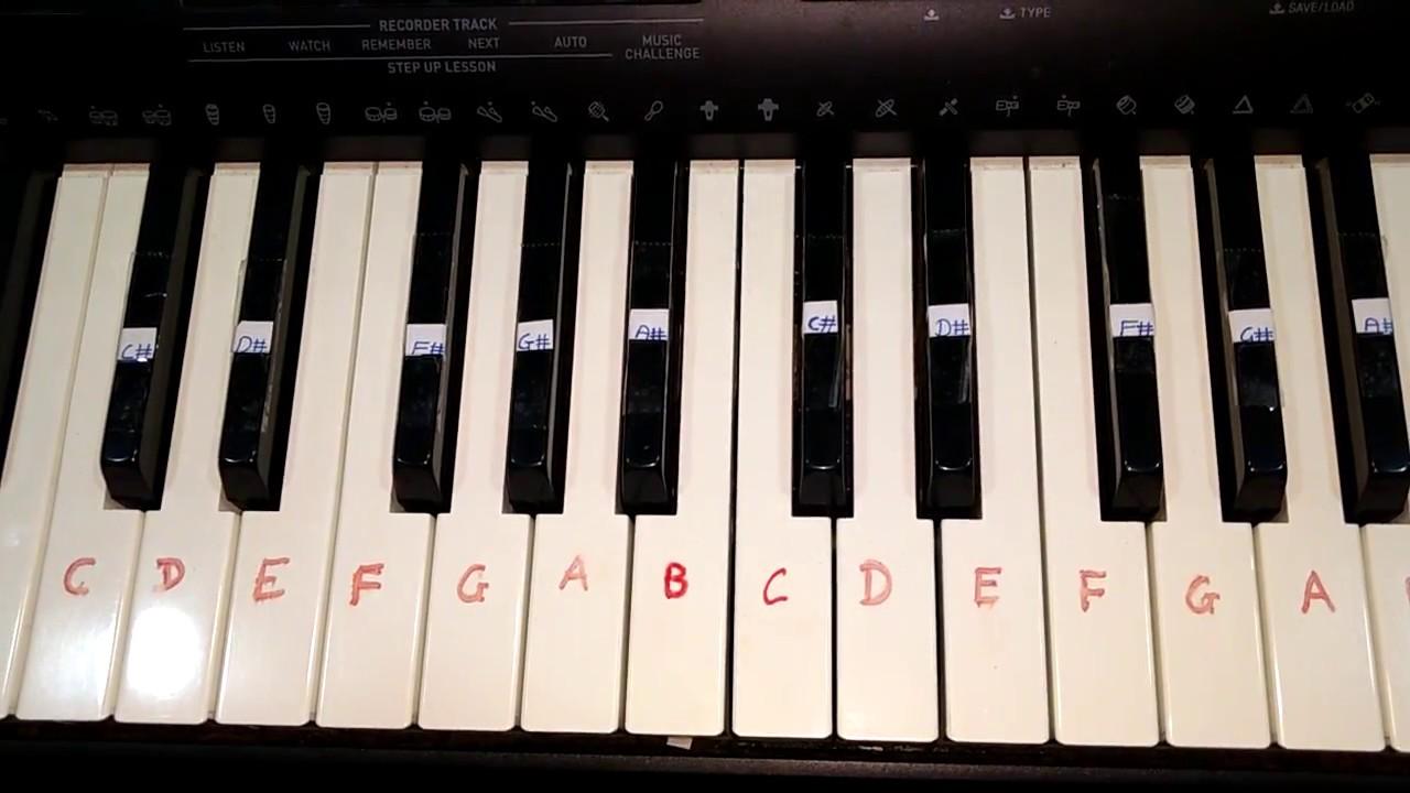 Kal ho na ho on keyboard notes chords and rhythm casio ctk 5000 kal ho na ho on keyboard notes chords and rhythm casio ctk 5000 hexwebz Images