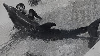 Dealing with a dolphin's 'urges' - The Girl Who Talked to Dolphins: Preview - BBC Four thumbnail