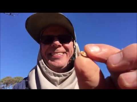 GOLD Detecting With General Hercules.In Western Australia 3/7/2019