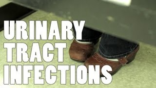 Urinary Tract Infections - 5
