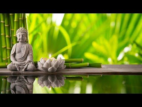 Música Relajante | Música de Relajación y Meditación | Música para Relajarse | Música Relax Zen