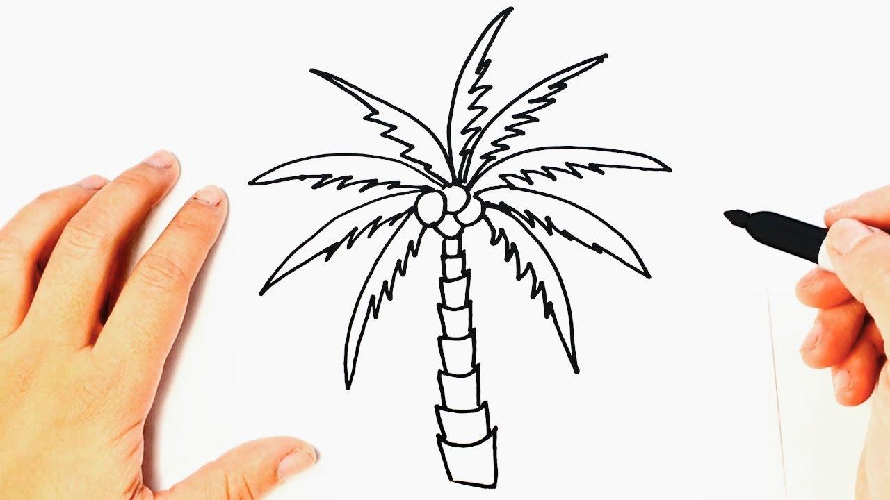 Cómo Dibujar Una Palmera Paso A Paso Dibujos Fáciles Youtube