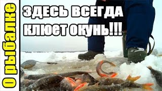 Зимняя рыбалка,о рыбалке на мормышку,ловля окуня зимой.Зимняя рыбалка 2019.