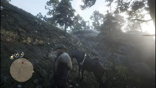 Red Dead Redemption 2_20181219001443