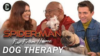 Tom Holland, Zendaya, and Jacob Batalon Play with Therapy Dogs
