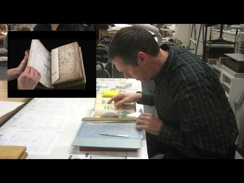 Voynich Manuscript - Decoded?