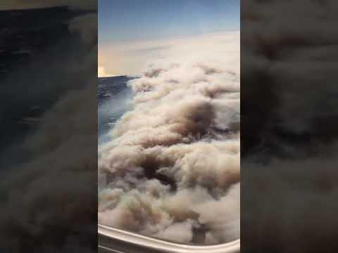 Ventura Fire From Plane - 978820