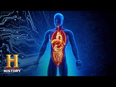 Ancient Aliens: The Steps to Immortality (S8, E3) | History