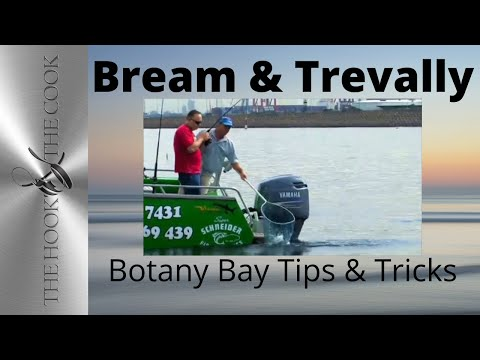 Fishing Botany Bay for Bream & Trevally